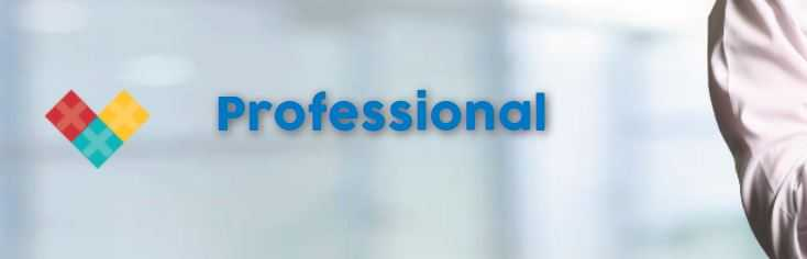 Profesional Indomaret Group
